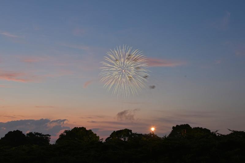 昭和記念公園20150725-2