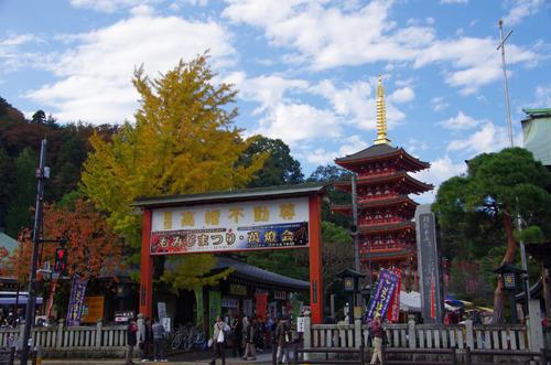 高幡不動201111-3