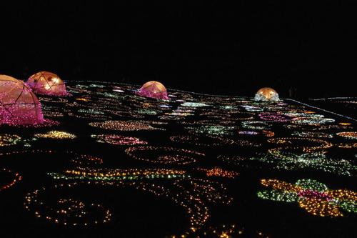 昭和記念公園イルミネーション201012-27