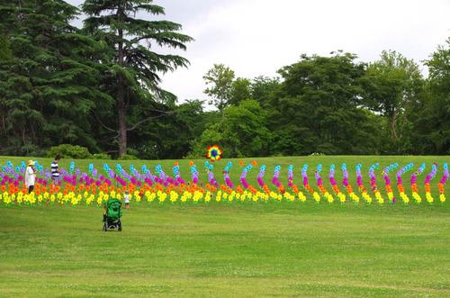 昭和記念公園201306-3