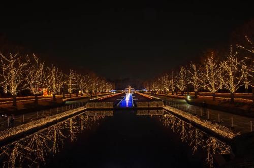 昭和記念公園201312-8