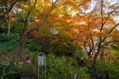 高幡不動201311-12
