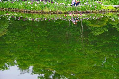 昭和記念公園201206-13