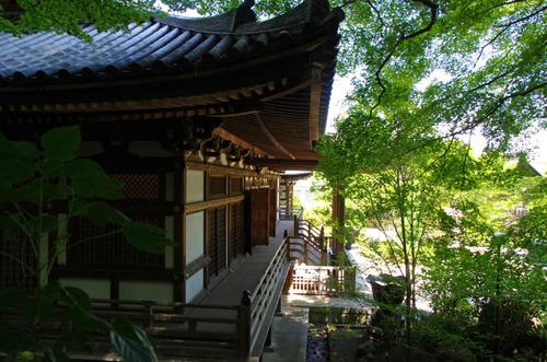 高幡不動201309-7