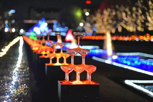 昭和記念公園201512-9