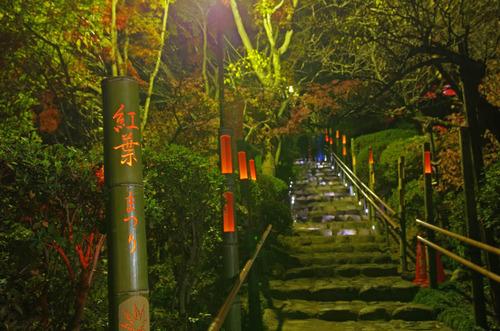 京王百草園201411-3