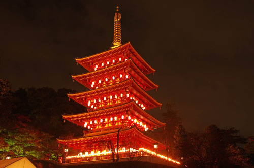 高幡不動尊万燈会201411-15