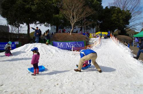 昭和記念公園201302-12