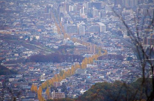 高尾山201111-16