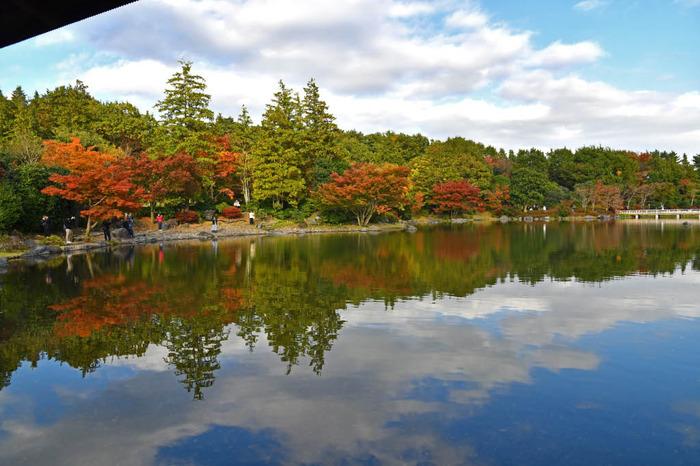 昭和記念公園201711