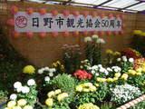 高幡不動菊祭り1-3