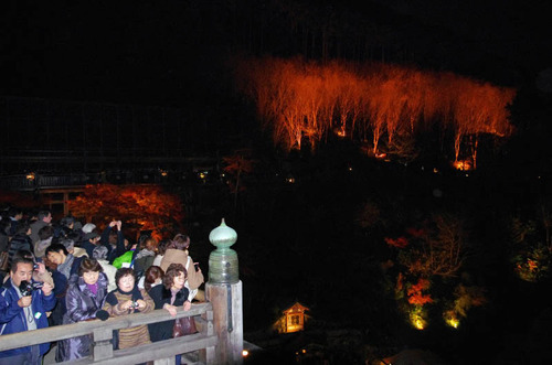 京都清水寺201211-4