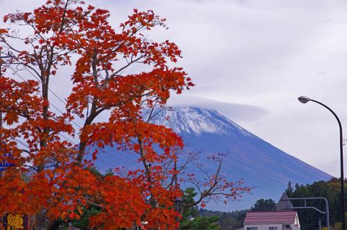 富士五湖の紅葉2013-15