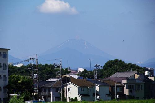 昭和記念公園201007-11