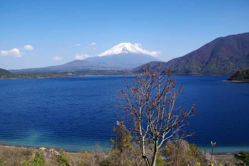 本栖湖からの富士山-2