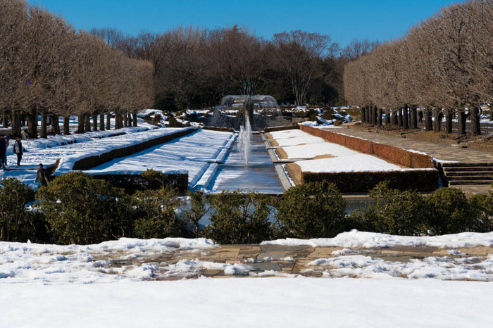 昭和記念公園201801
