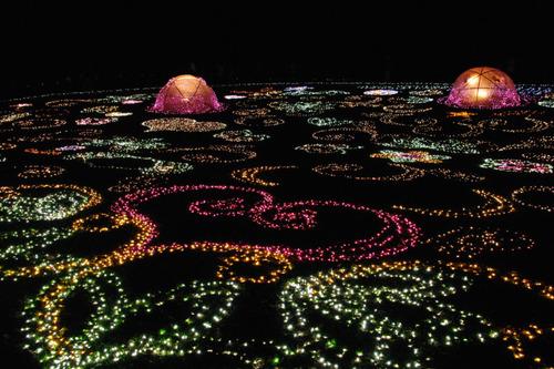 昭和記念公園イルミネーション201012-23