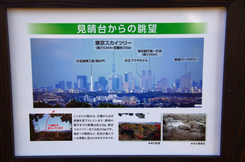 京王百草園201202-14
