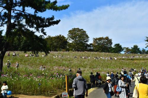 昭和記念公園201610