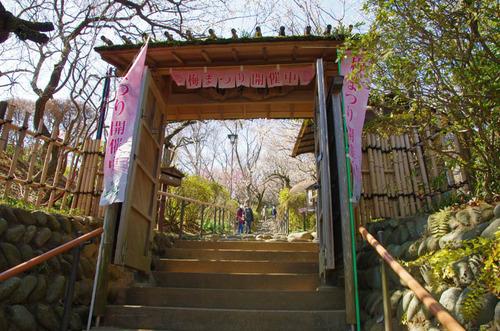 京王百草園201403-1