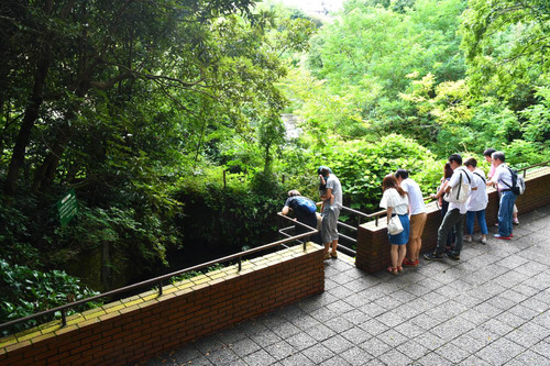 柿田川公園201607-7