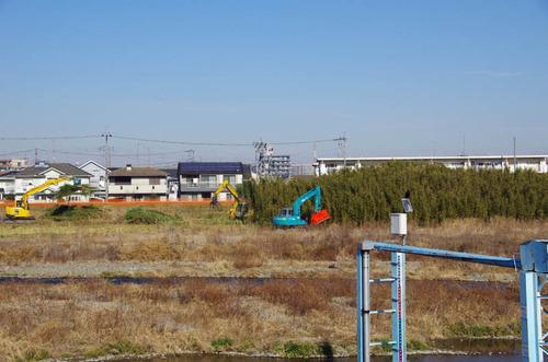 浅川河川敷201301-2
