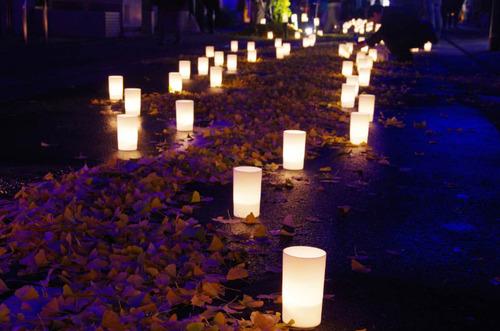 高幡不動尊201111-10