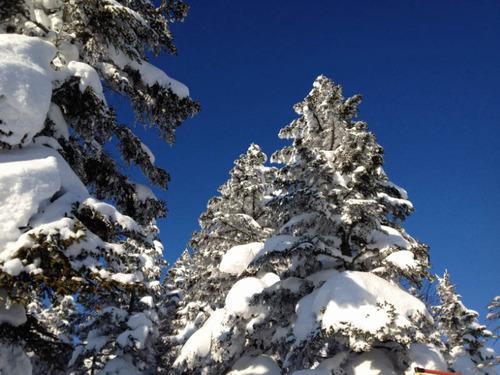 志賀高原スキー201201-7