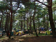 本栖湖キャンプ場200905-1