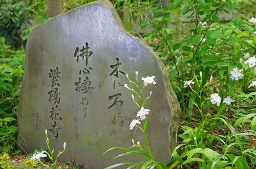 高幡不動201405-4