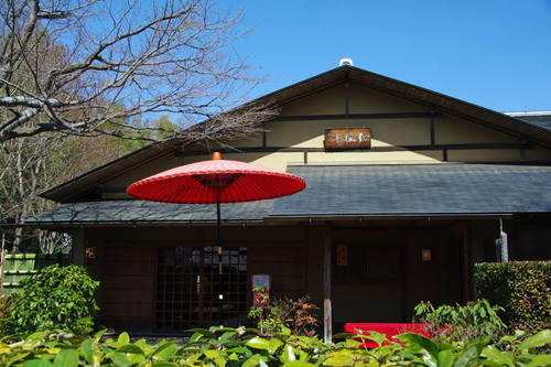 昭和記念公園日本庭園-6
