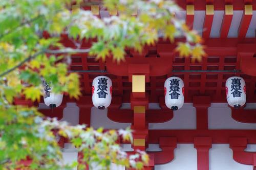 高幡不動201411-14