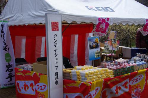京王百草園20120303-1