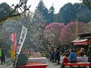 百草園梅祭090207-4
