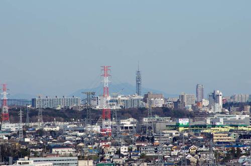 京王百草園201401-2
