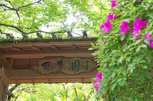 京王百草園201405-1