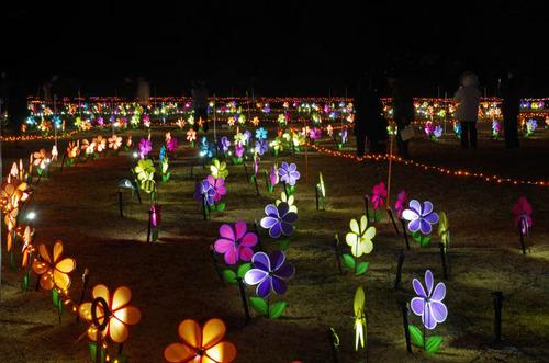 昭和記念公園201312-7