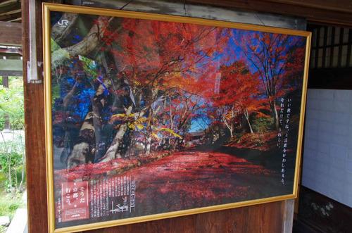 京都201307-6