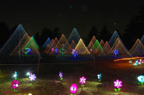 昭和記念公園201312−15