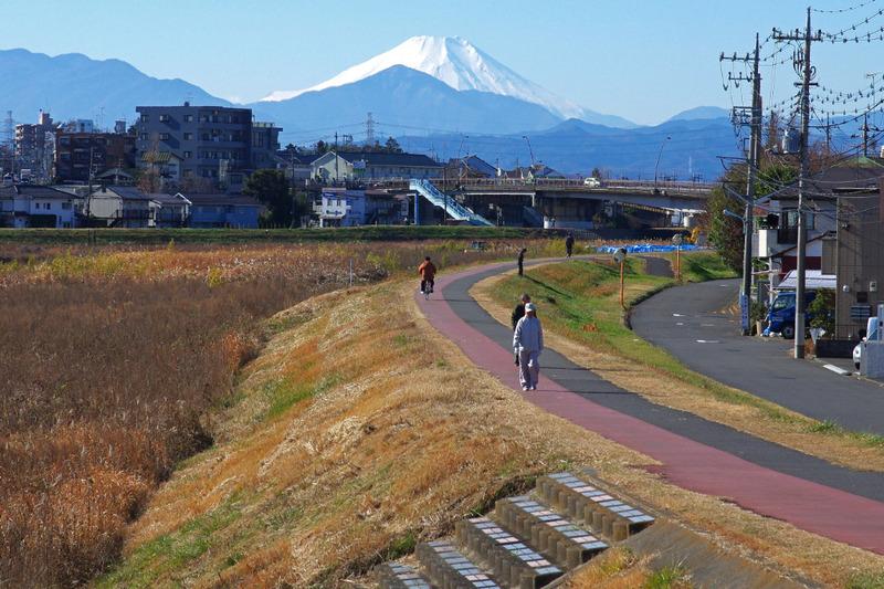 富士山散歩道