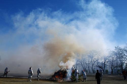 どんど焼2011-5