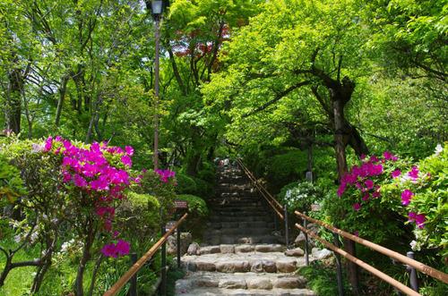 百草園201105-1