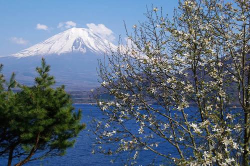 本栖湖からの富士山-7