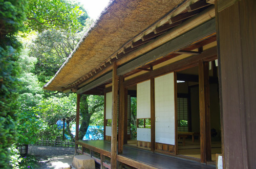 京王百草園201106-4