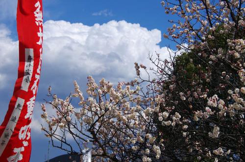 高幡不動尊201203-13