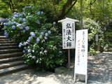 高幡不動0712-2