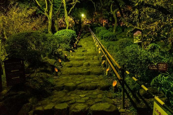 京王百草園紅葉ライトアップ2018