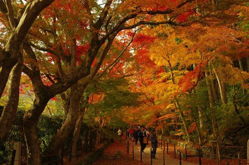 京都201211-4