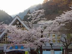 高尾山0904-9
