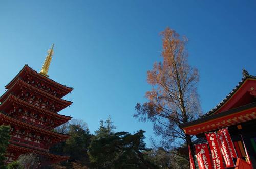 高幡不動201312-5